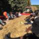 students on hayride