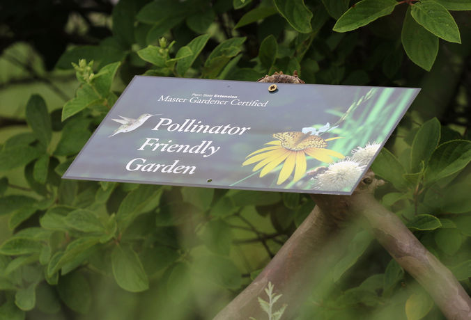 pollen friendly garden sign